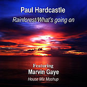 Play & Download Rainforest/What's Going On (House Mix Mashup) [Feat. Marvin Gaye] by Paul Hardcastle | Napster