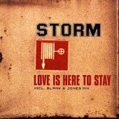 Love Is Here To Stay by Storm