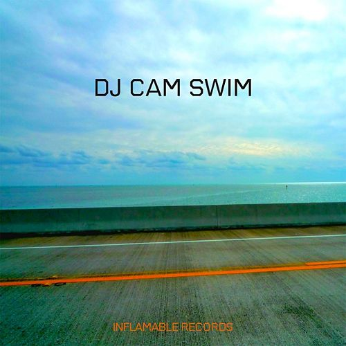 Play & Download Swim by DJ Cam | Napster