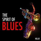 H.o.t.s Presents : The Spirit of Blues, Vol. 1 von Various Artists
