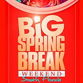 Play & Download Big Springbreak Week End 2011 by Various Artists | Napster