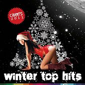 Winter Top Hits 2011 by Various Artists