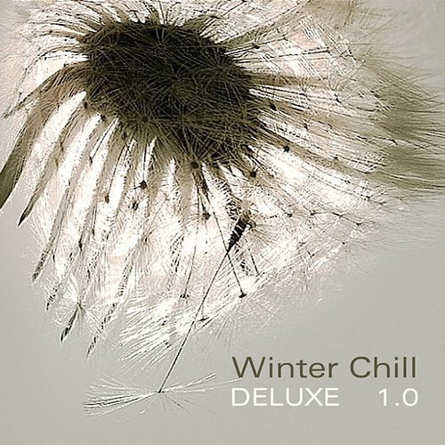 Play & Download Winter Chill Deluxe 1.0 by Various Artists | Napster