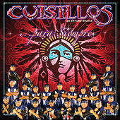 Play & Download Para Siempre by Banda Cuisillos | Napster