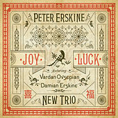 Play & Download Joy Luck by Peter Erskine New Trio | Napster