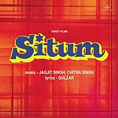 Situm by Various Artists
