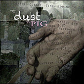 Dust by Pig