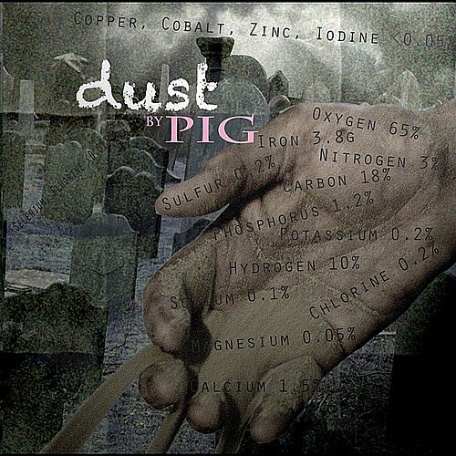 Play & Download Dust by Pig | Napster