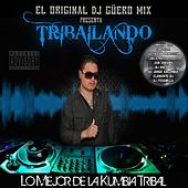Play & Download Tribailando by Various Artists | Napster