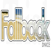 Play & Download Fallback by D-Nice | Napster