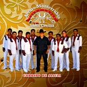 Play & Download Corrido De Alicia by Alvaro Monterrubio | Napster