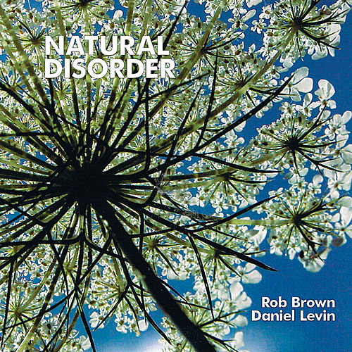 Natural disorder by Rob Brown