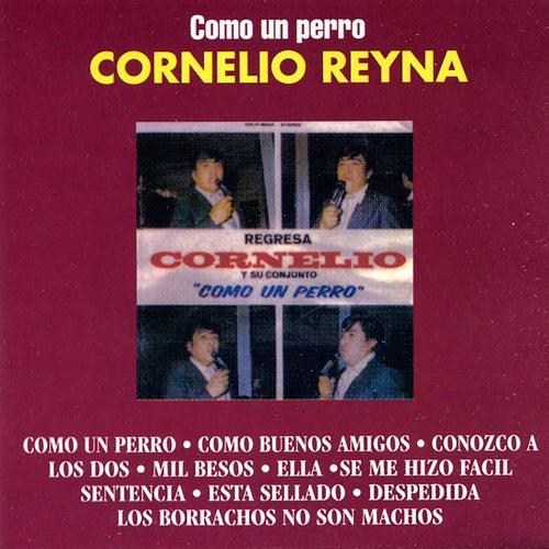 Play & Download Como Un Perro by Cornelio Reyna | Napster