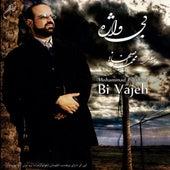 Bi Vajeh by Mohammad Esfahani