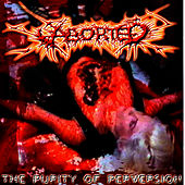 Play & Download The Purity Of Perversion by Aborted | Napster