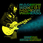 Essential Guitar Masters by Harvey Mandel