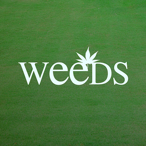 Play & Download Little Boxes (Weeds Main Theme) by The Weeds | Napster