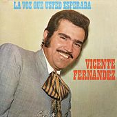 Play & Download La Voz Que Ud. Esperaba by Vicente Fernández | Napster