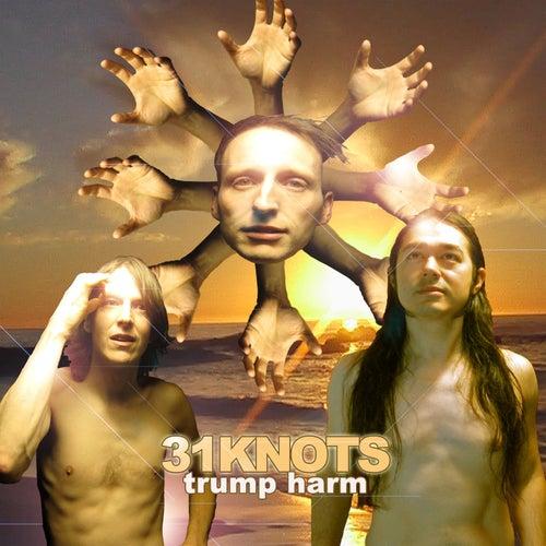 Trump Harm by 31Knots