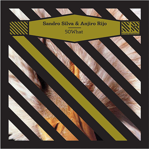 Fifty What / Vanilla Candy - EP by Sandro Silva