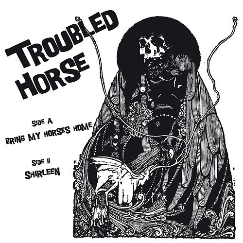Bring My Horses Home by Troubled Horse