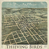 Thieving Birds by Thieving Birds