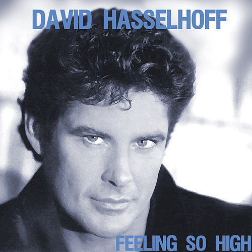 Feeling So High by David Hasselhoff
