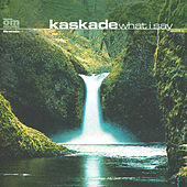 Play & Download What I Say by Kaskade | Napster