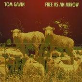 Free as an Arrow by Tom Gavin