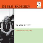 Play & Download Liszt: Wagner Opera Transcriptions by Idil Biret | Napster