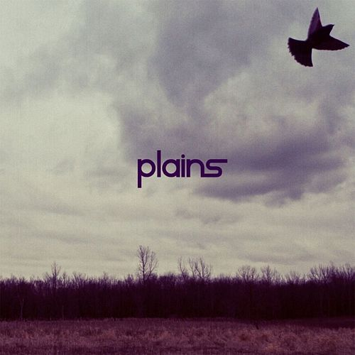 Play & Download Plains by The Plains | Napster