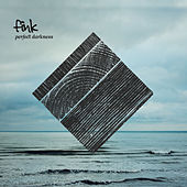 Play & Download Perfect Darkness by Fink (UK) | Napster