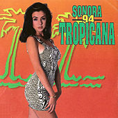 Play & Download Sonora Tropicana '94 by Sonora Tropicana | Napster