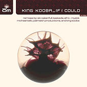 If I Could by King Kooba