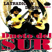 Play & Download La Tradición de Guerrero by Dueto del Sur | Napster