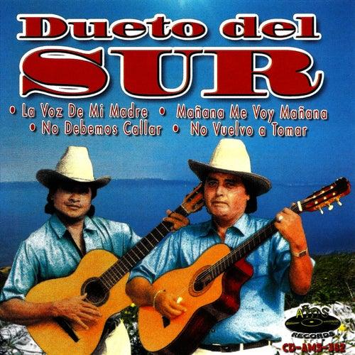Play & Download La Voz de Mi Madre by Dueto del Sur | Napster