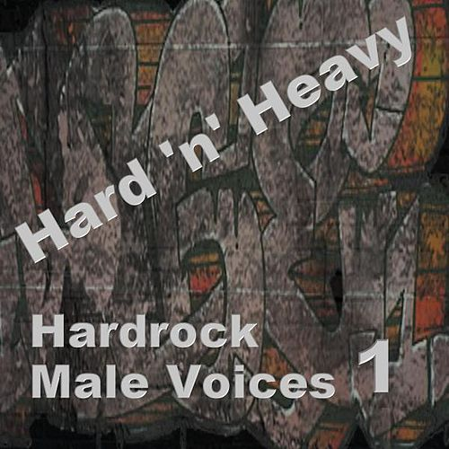 Hardrock Male Voices 1 by Various Artists