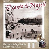 Il canto di Napoli, Vol. 11 by Various Artists