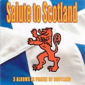 Play & Download Salute To Scotland by Various Artists | Napster