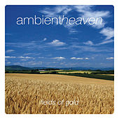 Ambient Heaven - Fields Of Gold by Various Artists