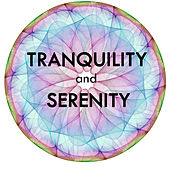 Soundscapes Relaxation Music - Tranquility and Serenity by Soundscapes Relaxation Music