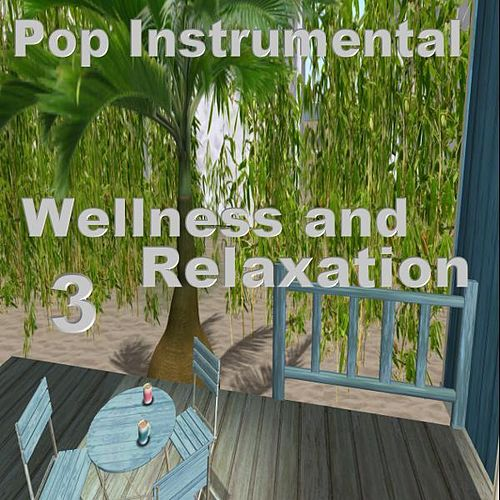 Play & Download Wellness and Relaxation 3 by Various Artists | Napster