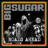 Roads Ahead - Single by Big Sugar