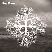 Play & Download Sketches by Ane Brun | Napster