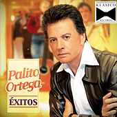 Play & Download Hoy by Palito Ortega | Napster