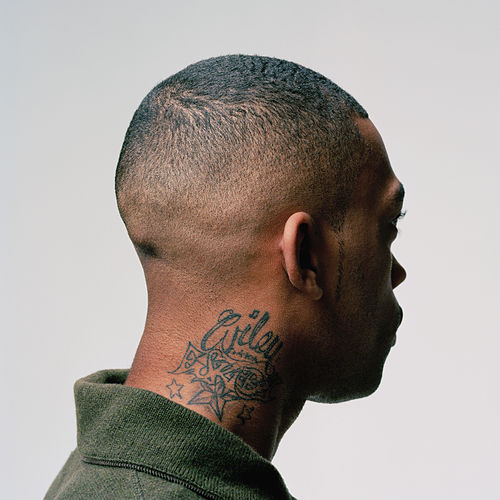 Play & Download 100% Publishing by Wiley | Napster