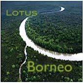 Borneo by LOTUS