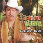 Play & Download Corazon De Oropel by El Halcon De La Sierra | Napster