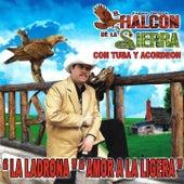 Play & Download Con Tuba Y Acordeon by El Halcon De La Sierra | Napster