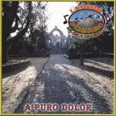 Play & Download A Puro Dolor by La Banda De Los Pobres Musica De Viento | Napster
